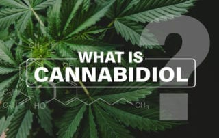 What is Cannabidiol - CDB Oil