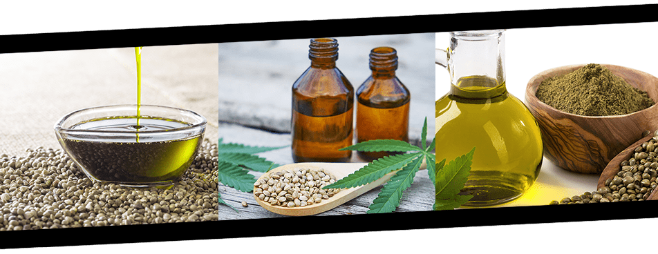 hemp seeds, leaves, and oils in a picture banner